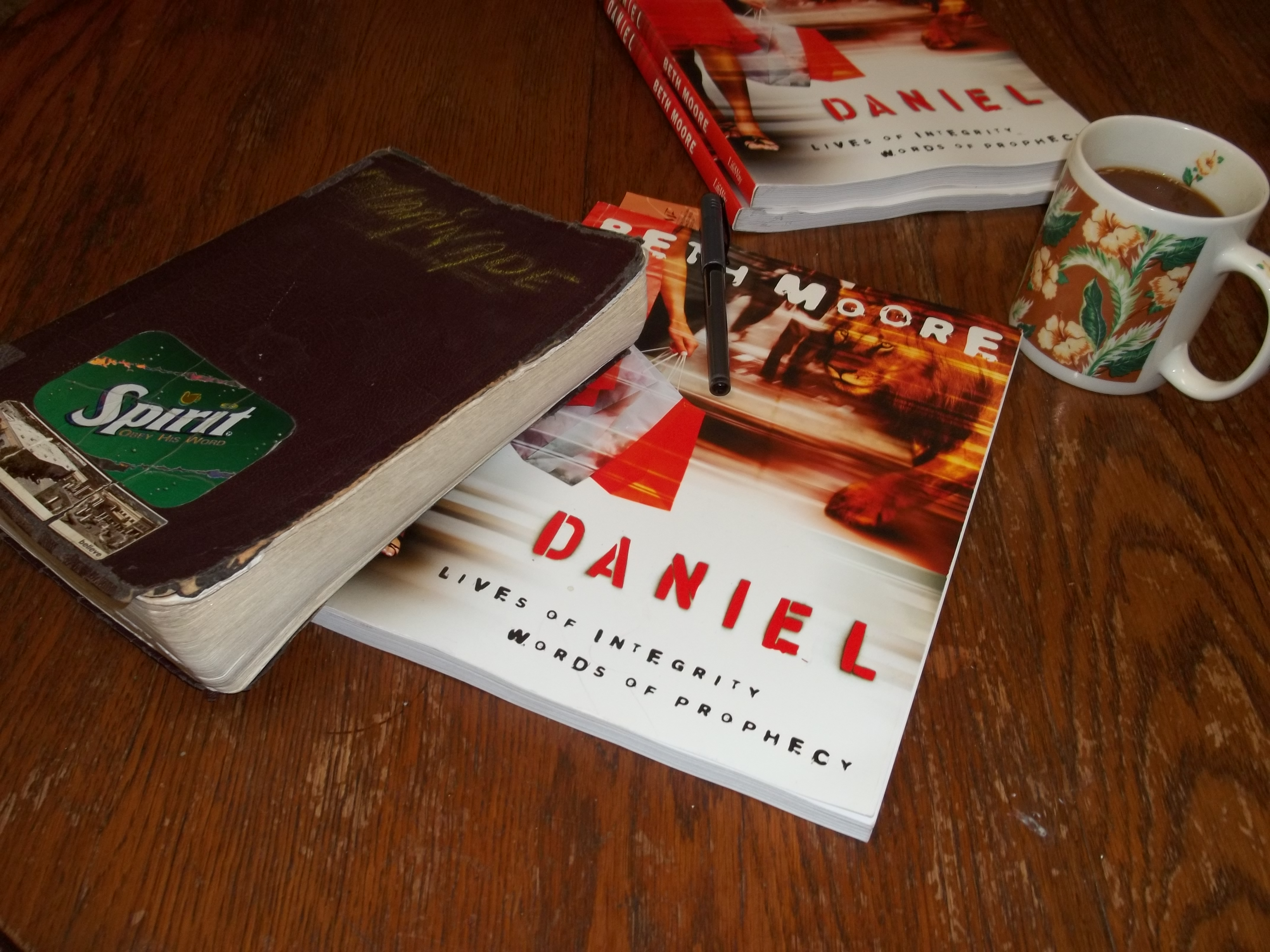 Daniel: Lives of Integrity Words of Prophecy, Member Book ...